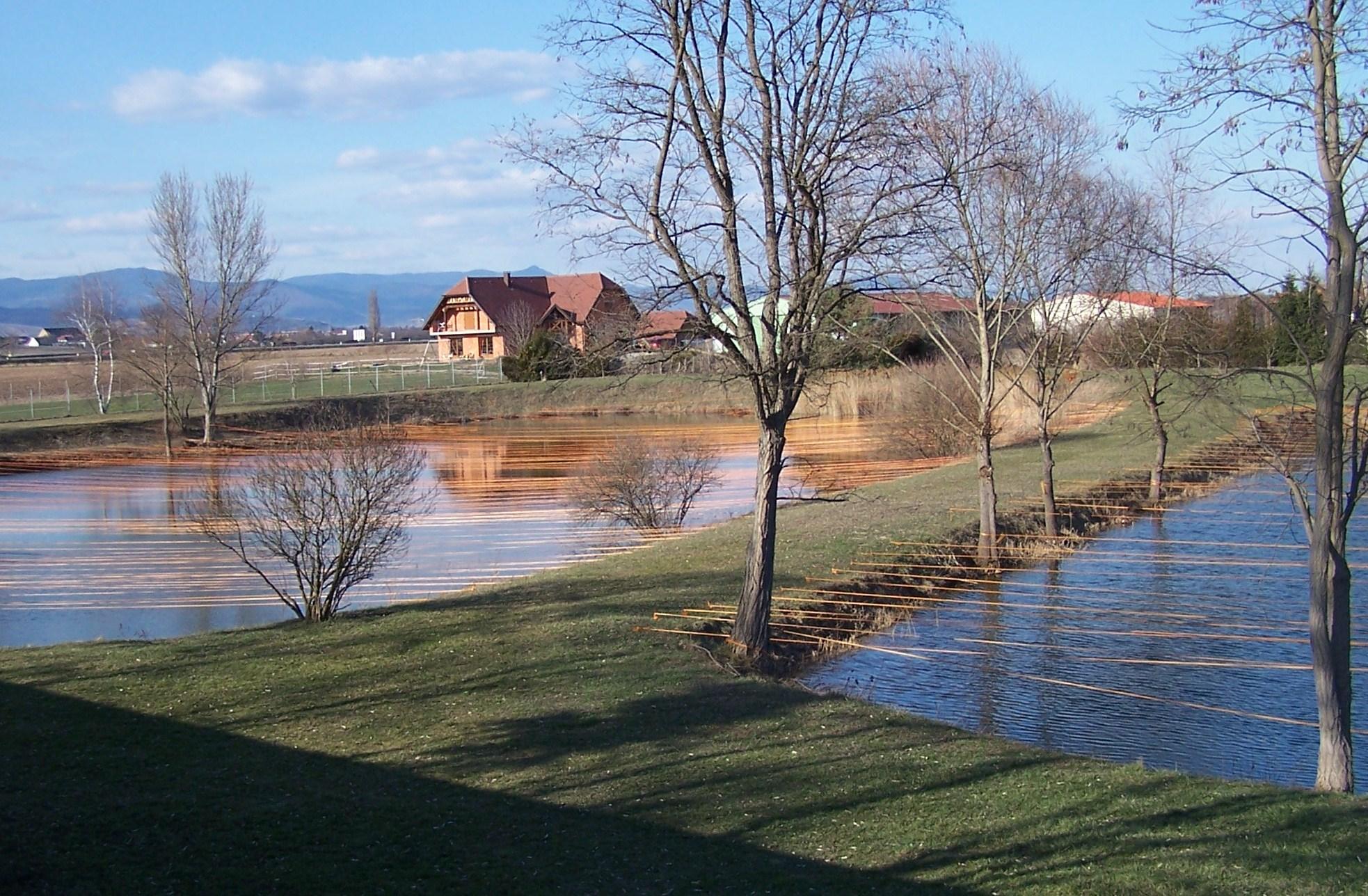 Les étangs St Georges mars 2010
